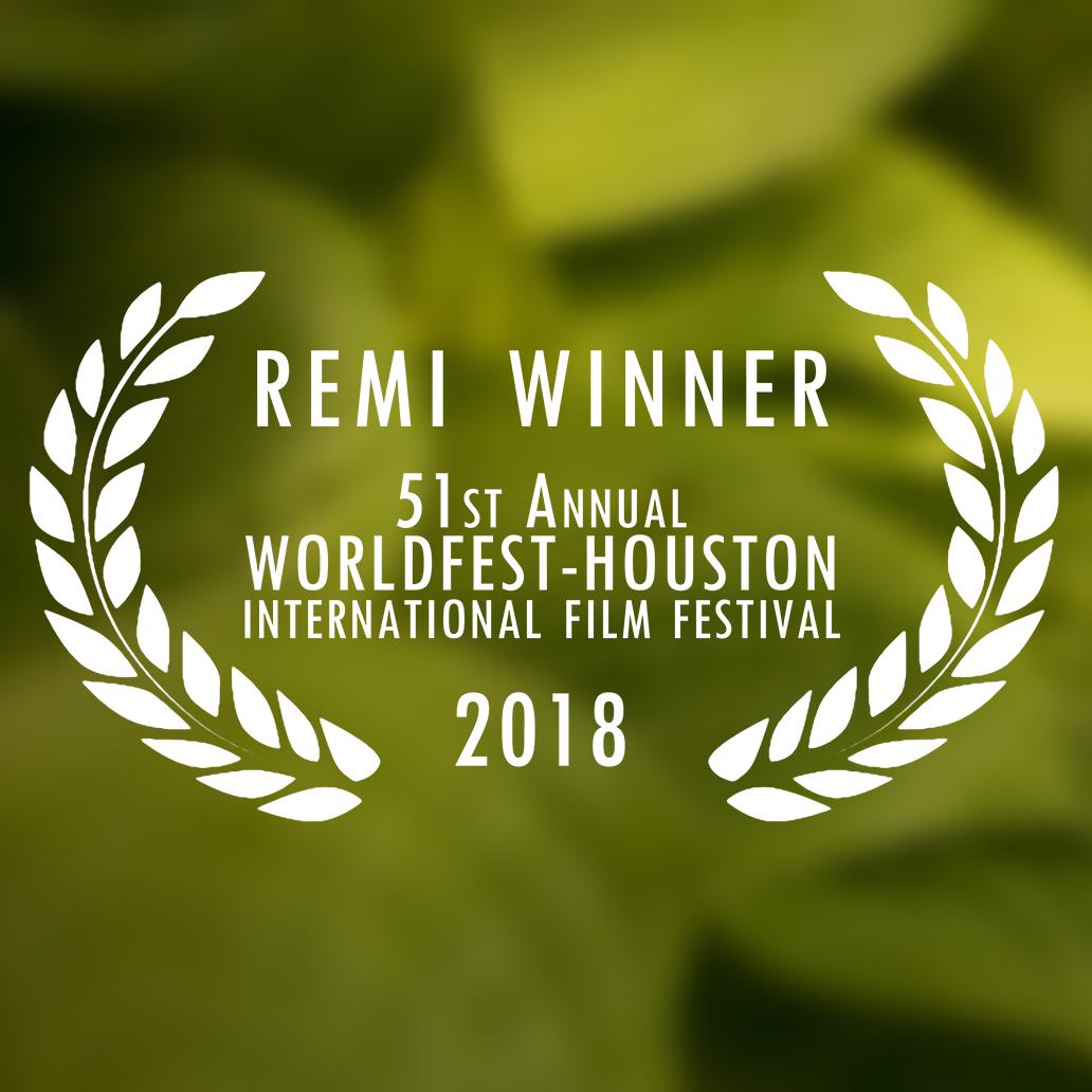 WorldFest Houston, 2018, Film Festival, All Things Beautiful, Official Selection, Remi Winner, Remi Award, Ava Torres, Helmann Wilhelm, Short Film, filmmakers